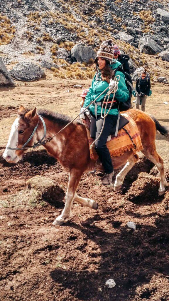 Salkantay horse