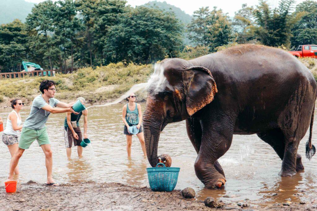 elephant sanctuary bath