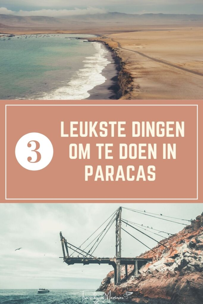 Wat te doen in Paracas Pin III