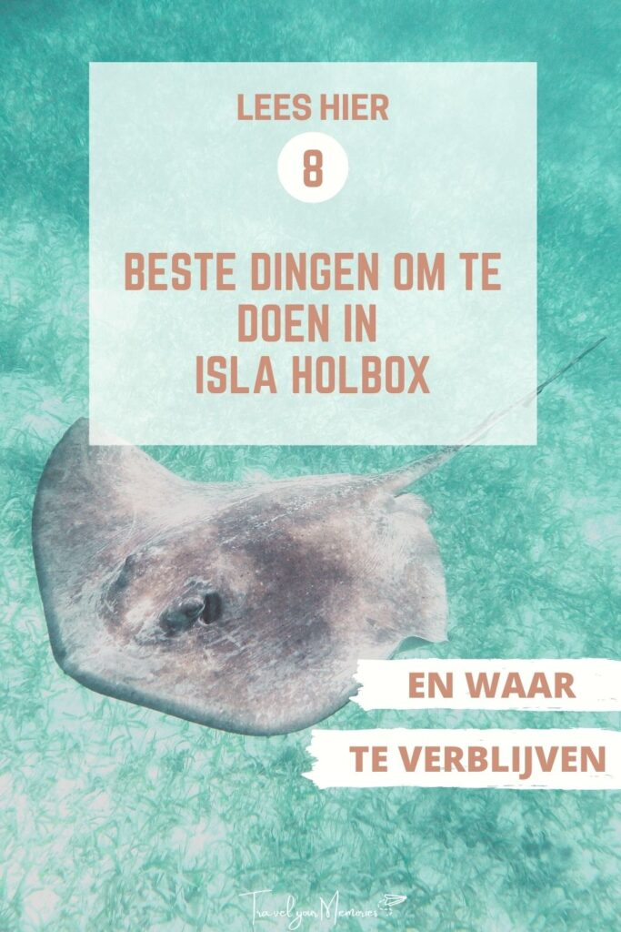 wat te doen in Isla Holbox pin II