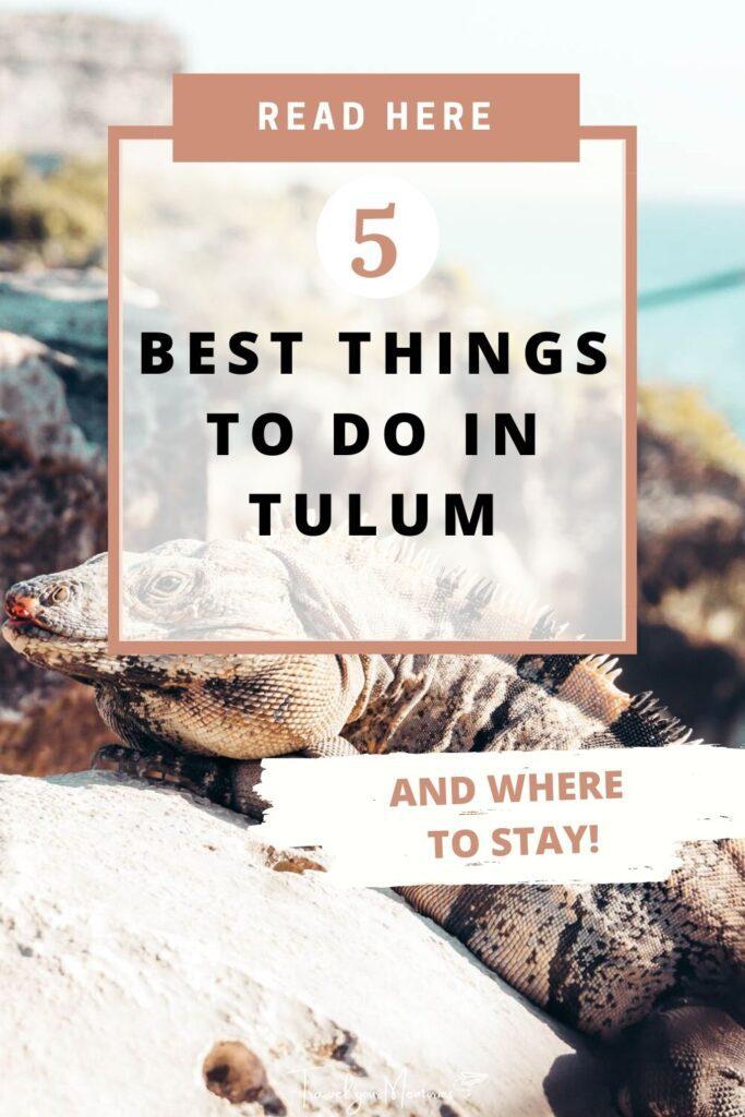 things to do in Tulum pin III