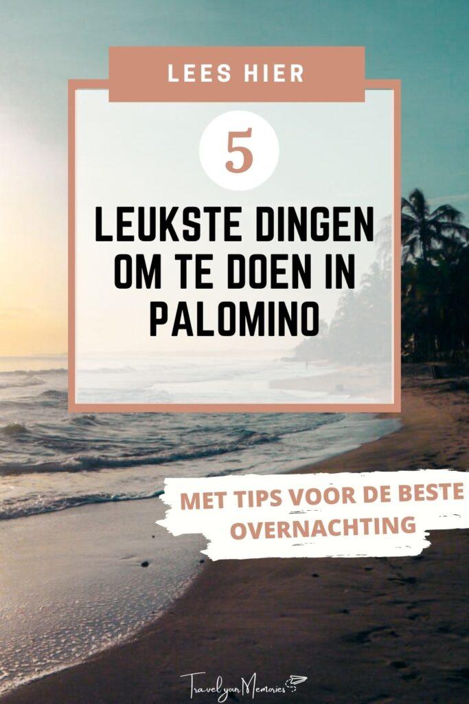 wat te doen in Palomino Pin II
