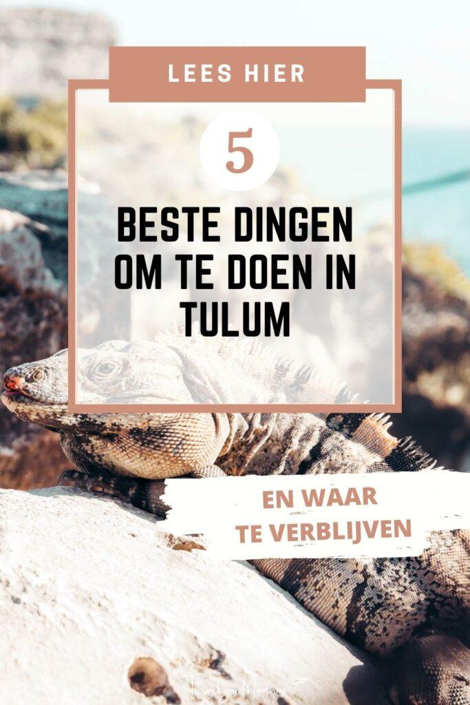 wat te doen in Tulum pin II