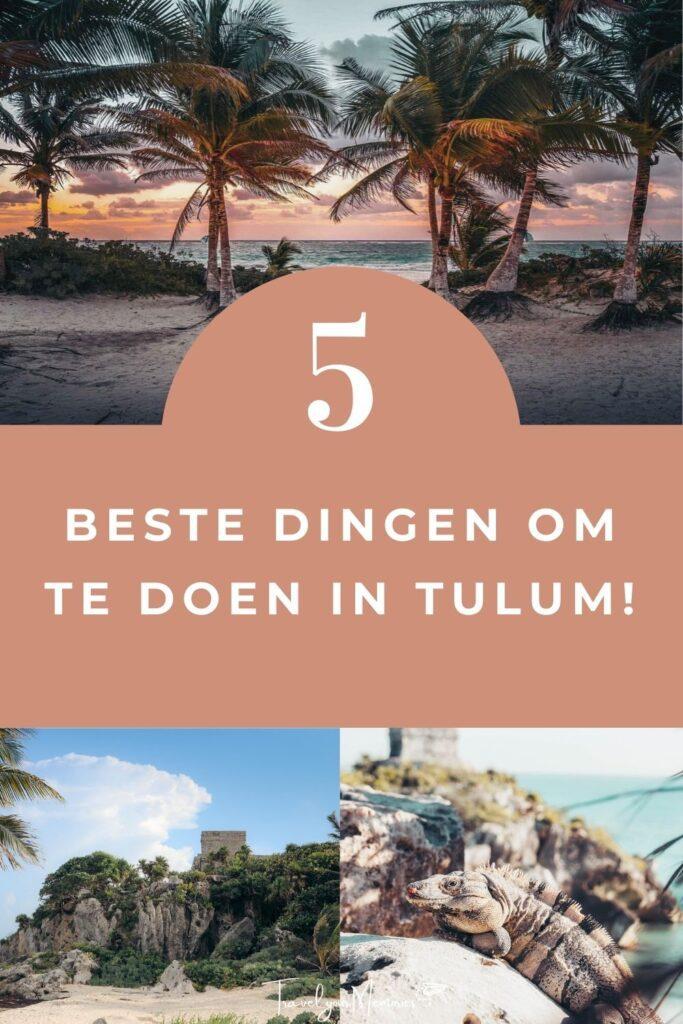 wat te doen in Tulum pin III
