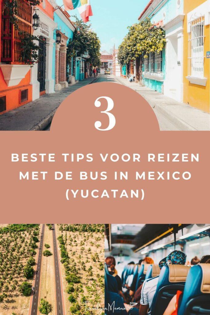Mexico busreis pin I