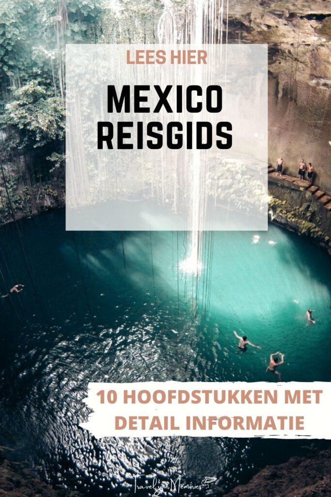 mexico reisgids pin II