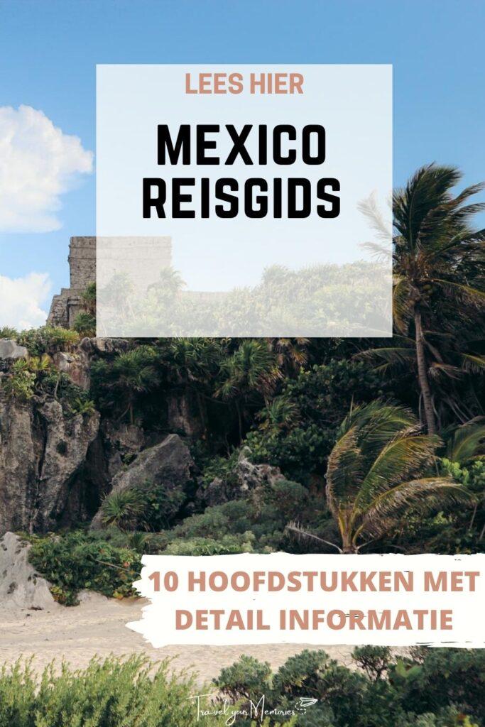 mexico reisgids pin III